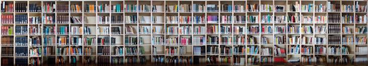 Evangelische Bibliothek Alzey Übersicht